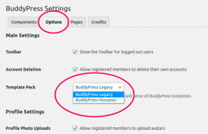 BuddyPress Template Pack setting