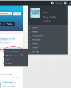 account-status-in-settings-menu-link