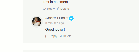 buddyverified-comment-badge-non-overlap