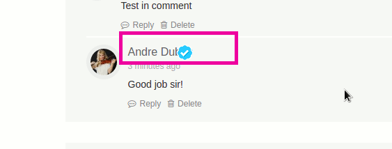 buddyverified-comment-badge-overlap
