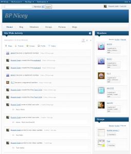 bp-nicey-home