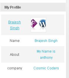 profile-on-blogs