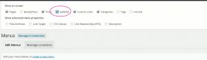 enabling-mpp-gallery-in-wordpress-menu-screen