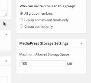 group-custom-storage-space-settings