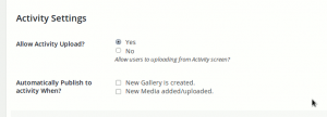 buddypress-activity-settings