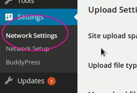 default-theme-for-blogs-admin-menu