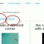 Individual Gallery Edit Link