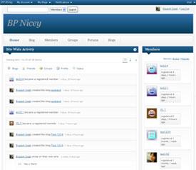 theme-post-thumbnail-bp-nicey