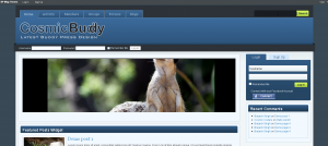 Introducing Bp Mag: A Professional Theme Framework for BuddyPress based Sites