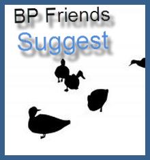 friend-suggest-icon