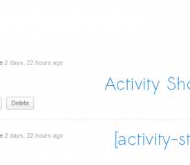 activity-list-in-posts-1