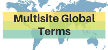 Multisite Global Terms