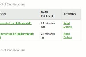 Blog comment Notification