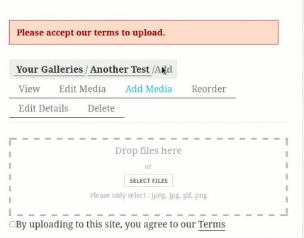 mpp-upload-tos-single-gallery-error