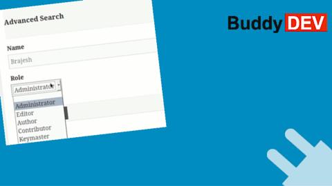 BuddyPres Pseudo Role Field
