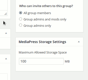 group-custom-storage-space-settings