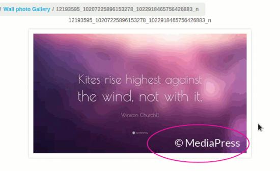 mpp-text-watermark-example