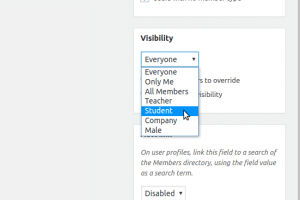 BuddyPress Member Types as profile visibility levels on profile field create/edit page.